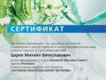 Сертификат Education Expert Premium Царев М.В.